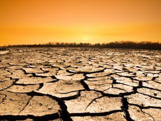 Réchauffement climatique : La chaleur extrême risque de rendre l'Asie du sud invivable d'ici 2100