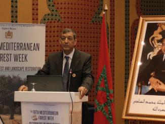 Haut-Commissaire aux eaux et forêts et à la lutte contre la désertification (HCEFLCD), Abdeladim Lhafi.