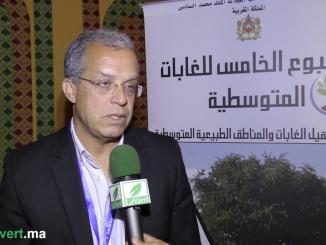 Saadani youssef