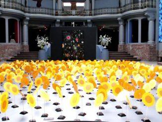 Des fleurs solaires qui dansent