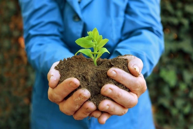 Le monde c l bre la journ e internationale de la terre for Les decoratives brut de terre