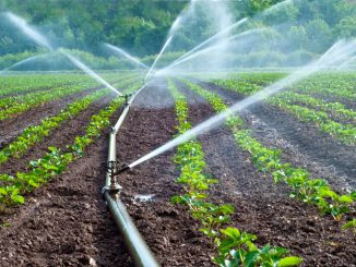 Agriculture durable : Projets d'irrigation