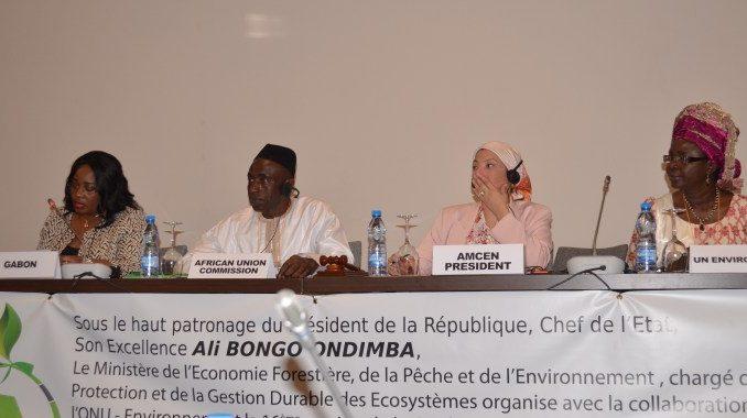 Conférence ministérielle africaine de l'environnement