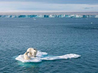 Réchauffement climatique -Arctique
