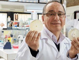 Adnane Remmal a remporté le prix du public de l'inventeur européen de 2017 pour ses antibiotiques tirés de la nature