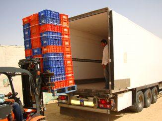 Le Maroc est le premier exportateur de fruits et légumes vers l'Espagne