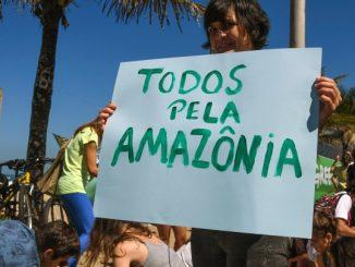 Le Brésil annule un permis d'exploitation minière d'une réserve d'Amazonie