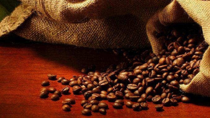 Le réchauffement climatique menace la production de café