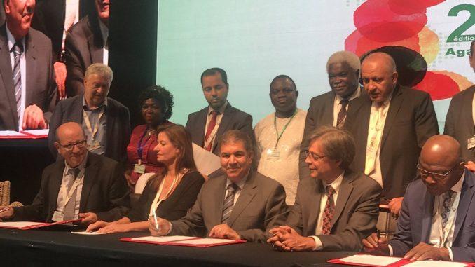 Climate Chance : Les élus locaux africains se mobilisent à leur tour contre le dérèglement climatique