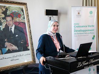 السيدة نزهة الوافي كاتبة الدولة المكلفة بالتنمية المستدامة