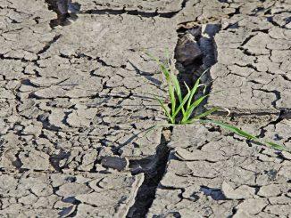 Le Maroc vient de rejoindre l'Alliance mondiale des terres arides.