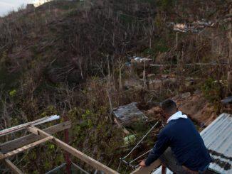 A Porto Rico, l'écosystème mettra des années à se remettre de l'ouragan Maria