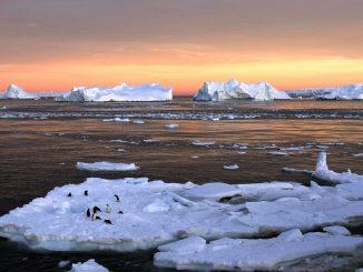 Climat: la concentration de CO2 dans l'atmosphère atteint un record