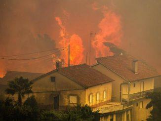 Incendies de forêt : le Portugal pleure ses 36 morts et décrète un deuil national