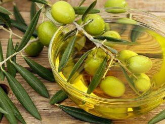 La production marocaine d'olives atteindra un record historique