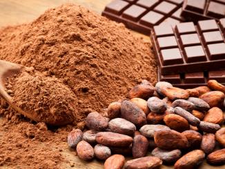 L'humidité nécessaire à la culture du cacaotier menacée par le réchauffement climatique