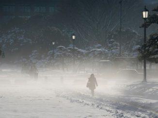 Japon: Les services d'urgence débordés dans un Tokyo glacial