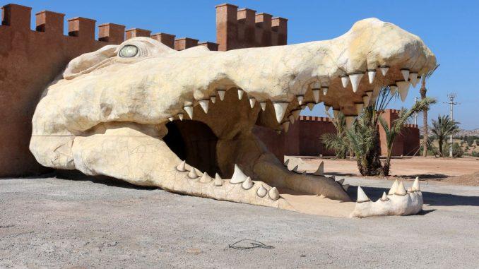 AGADIR: Le « Jardin des cactus », la nouveauté du parc à crocodiles