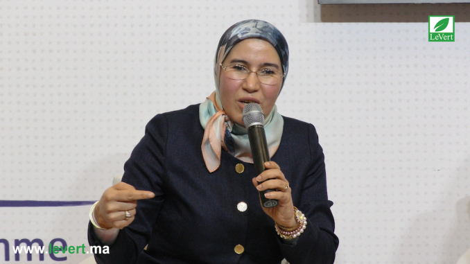 نزهة الوفي، كاتبة الدولة المكلفة بالتنمية المستدامة