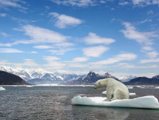 Réchauffement climatique : La hausse du niveau des océans s'accélère