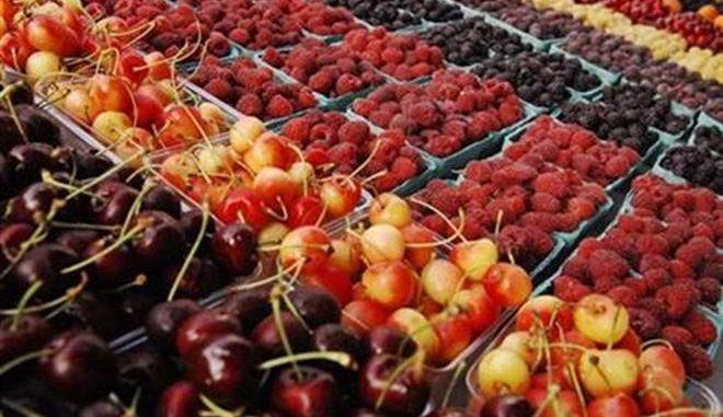 Larache : L'ouverture du 2ème festival des fruits rouges est reportée au 22 mars