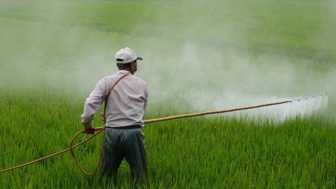 La FAO organise 3 évènements pour appuyer le Maroc dans la gestion des pesticides