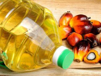 L'huile de palme, pose-t-elle vraiment des problèmes de santé ?