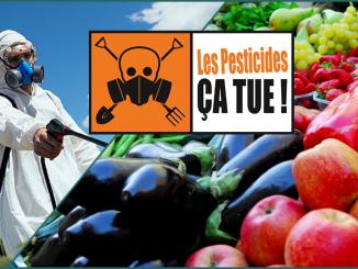 Des fruits et des légumes dangereusement contaminés