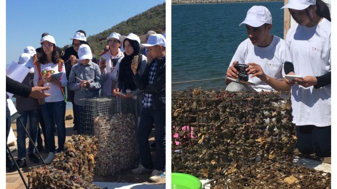 FM6E : Opération sensibilisation à la protection du littoral et de l'Océan