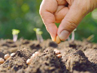 Meknès : Ouverture des 10èmes assises de l'agriculture