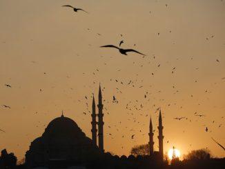 Turquie : l'électricité issue des énergies renouvelables sera bientôt moins chère que celle issue des combustibles fossiles