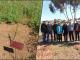 Haut-Commissariat aux Eaux et Forêts et à la Lutte Contre la Désertification