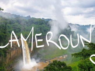 Le Cameroun dispose de la cinquième biodiversité la plus riche sur l'ensemble du continent africain