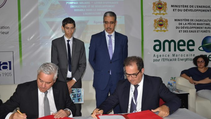Le groupe italien ZECCA et l'AMEE, partenaires pour la promotion de l'efficacité énergétique