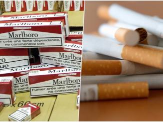 commerce illicite des produits du tabac
