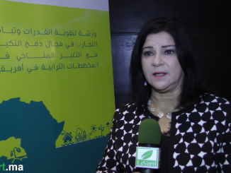 Mme Rajae CHAFIL, directrice du Centre marocain des compétences sur le changement climatique 4C MAROC