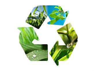 Développement durable : La mise en œuvre du concept de l'exemplarité de l'Etat a été adoptée