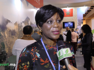 Arlette Soudan Nonault, ministre du Tourisme et de l'environnement du Gongo.