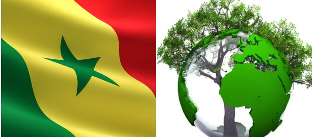Le Sénégal s'oriente de plus en plus vers le tourisme durable
