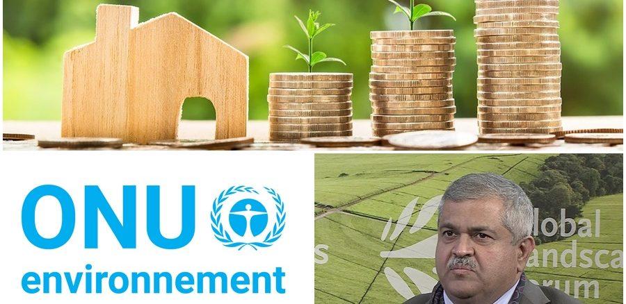 ONU Environnement mobilisera 100 milliards de dollars dans des projets durables à horizon 2025